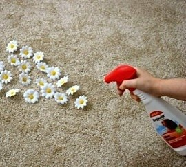 270-243-a53a3d-odourremover2 Decluttering Your Home for a Better Spring Clean