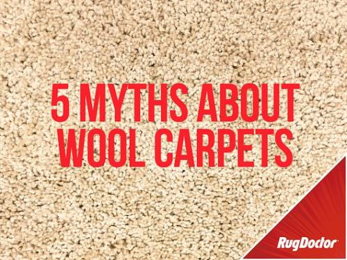 myths about wool carpets