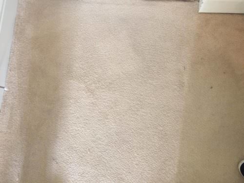 "rugggggg-500x375 ""The Rug Doctor – Carpet Cleaning Review"" (Guest Blog by Outnumbered By Boys)"
