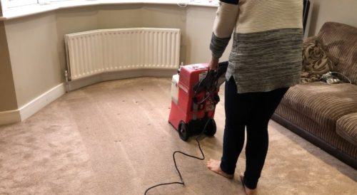Rug-Doctor-cleaning-results-500x274 Rug Doctor Hire Review (Guest Blog