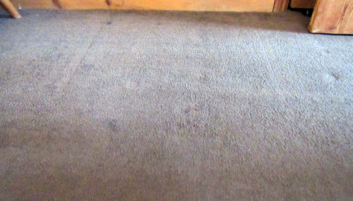 diary-of-the-dad-rug-doctor-after-500x285 Cleaning Up With Rug Doctor (Guest Blog by Diary of the Dad)