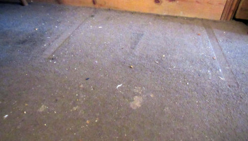 diary-of-the-dad-rug-doctor-before-500x285 Cleaning Up With Rug Doctor (Guest Blog by Diary of the Dad)