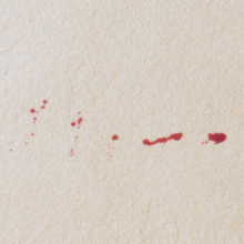 blood-step-2-220 How to Remove Blood Stains