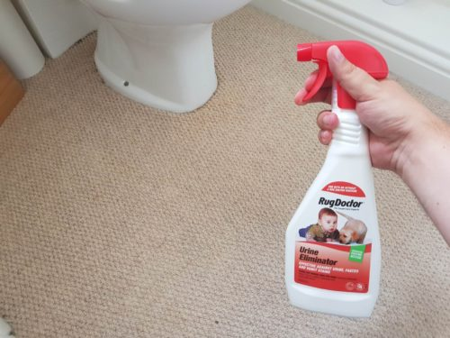 Rug-Doctor-Urine-Spray-in-Bathroom-500x375 Rug Doctor Cleaning Solutions (Guest Blog by One Dad One Blog)
