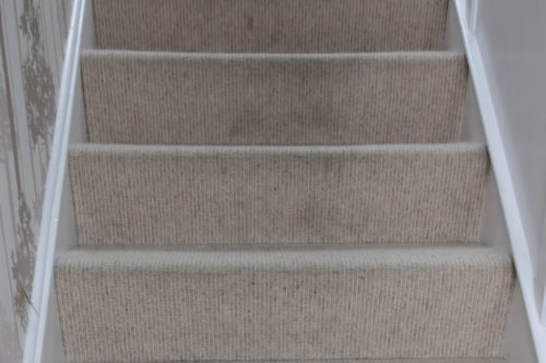BB23-500x333 Rug Doctor Deep Carpet Cleaner Review (Guest Blog by Renovation Bay-Bee)