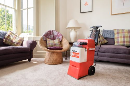 Rug-Doctor-Machine-in-Home-500x333 Student Cleaning Tips